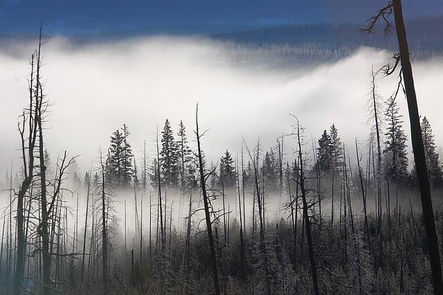 IMG_0331 Yellowstone Lake