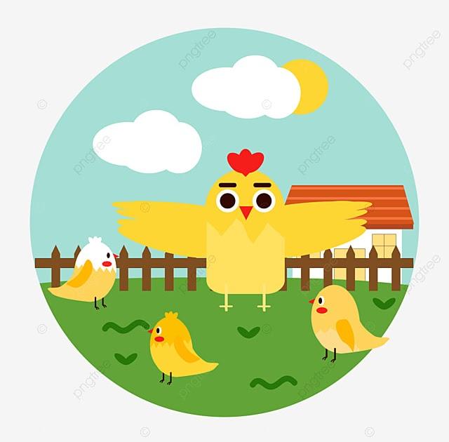 gambar mewarnai ayam goreng ayam goreng ayam panggang