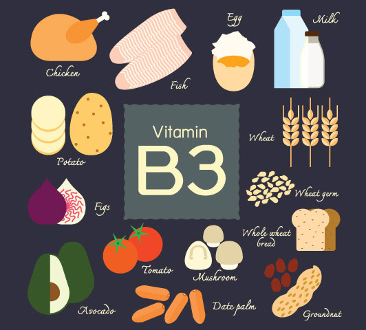 24 vitamin b rich foods you should include in your diet