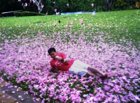 photo Tekkaus Among Petals_zpsizdrizy2.jpg