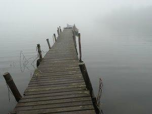 Fog: No description