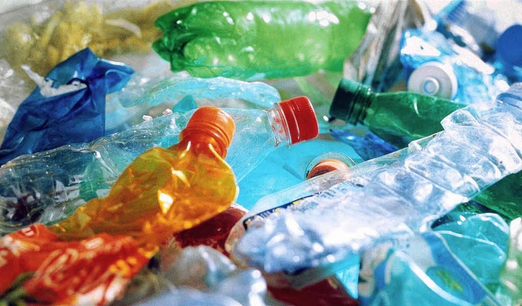 Plastik sogar im Blut Literatur Badische Zeitung