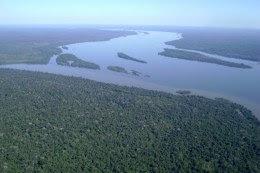 Foto aérea do encontro de dois grandes rios, o Tapajós e o Jamanxim, com florestas em volta.