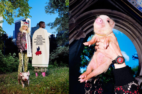 774d40d51283ec Gucci Celebrates Chinese New Year With Disney's 'Three Little Pigs'