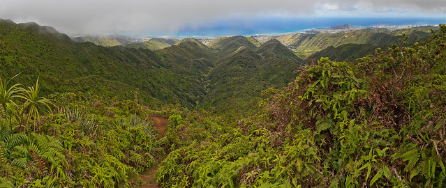Hawaii.Loa.Ridge.01
