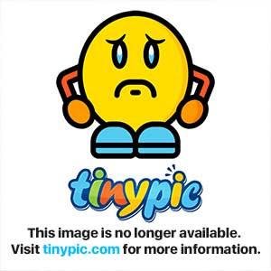 Hybenrose