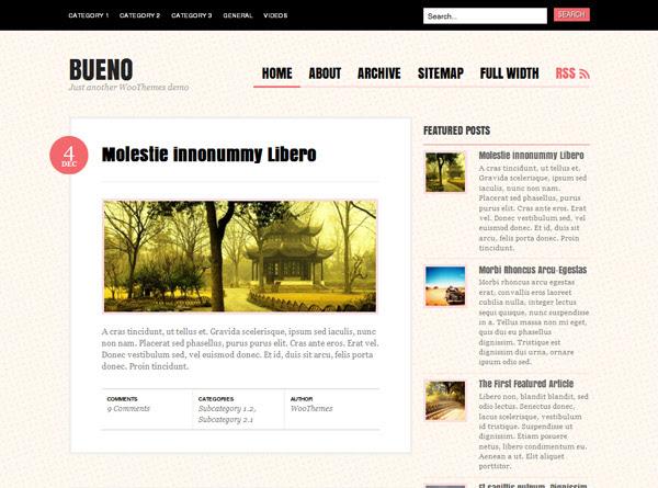 Bueno WordPress Teması İndir