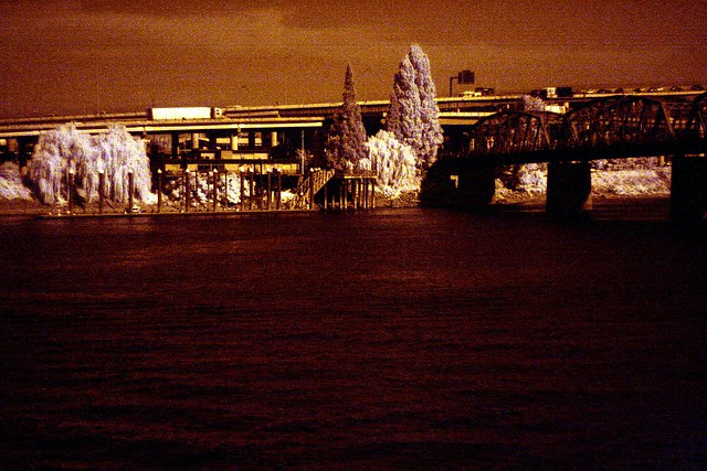 waterfront park, infrared