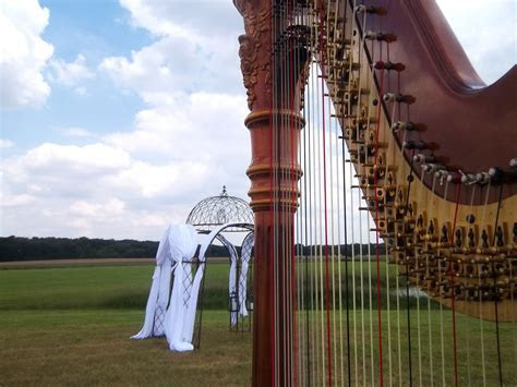 Taylorville Wedding Harpist ~ Ceremony Music on a Family