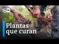 Documental Online Medicina ancestral y complementaria en Perú