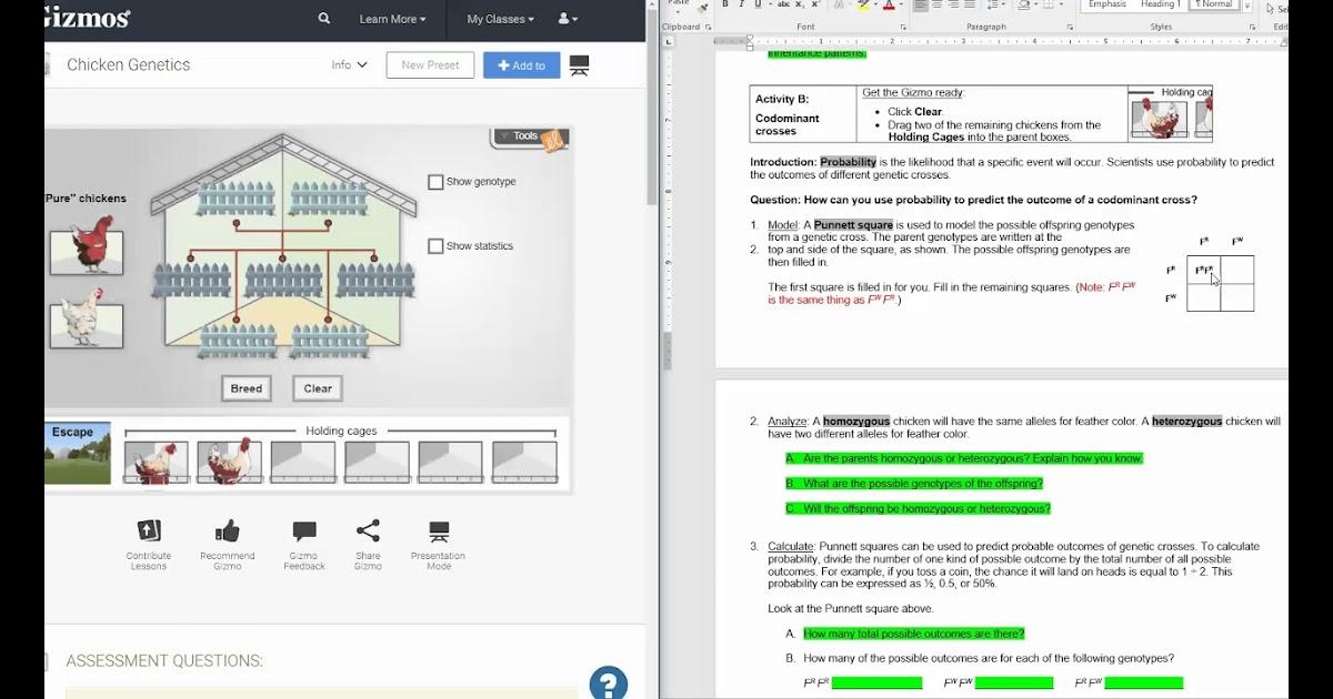 Meiosis Gizmo Answer Key Pdf Activity B : Half Life Gizmo ...