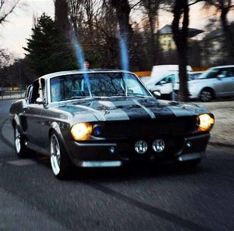 images  mustangs  pinterest shelby gt