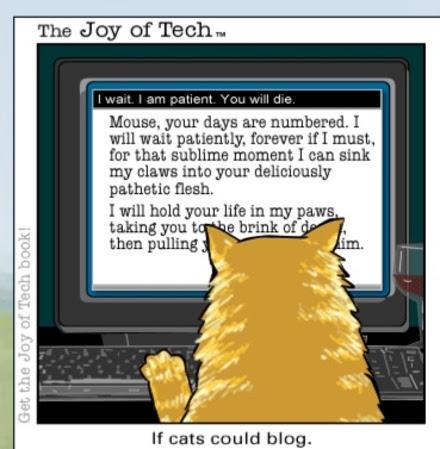 cat_blog1