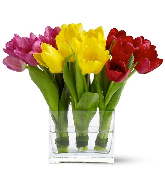 http://www.gifttree.com/images/super/7608a_Tulip-Trio.jpg