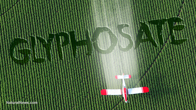 """Image: Coincidence? Monsanto patented glyphosate as an """"antibiotic"""" drug, claiming weed killer is medicine"""