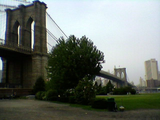 View from Empire Fulton Ferry Park
