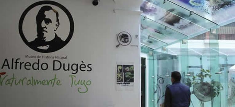 curso-verano-cientifico-museo-duges-universidad-guanajuato-ug-ugto