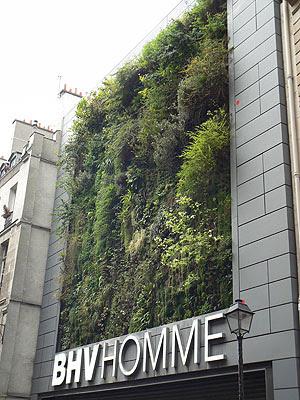 mur végétal BHV.jpg