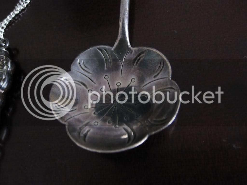Long Tea Spoon