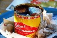 Surströmming (Skandinavia)