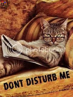 Dont Disturb Me Pics Funny Images Dont Disturb Me Quotes 25