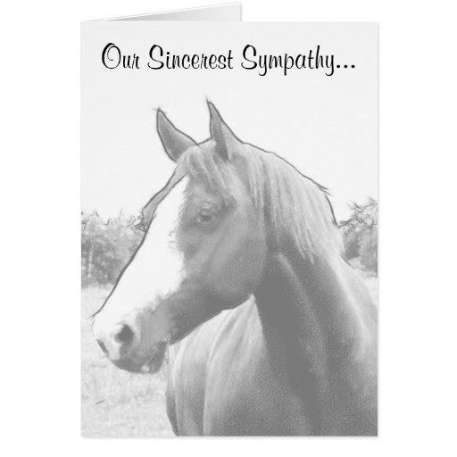 Horse Sympathy Quotes