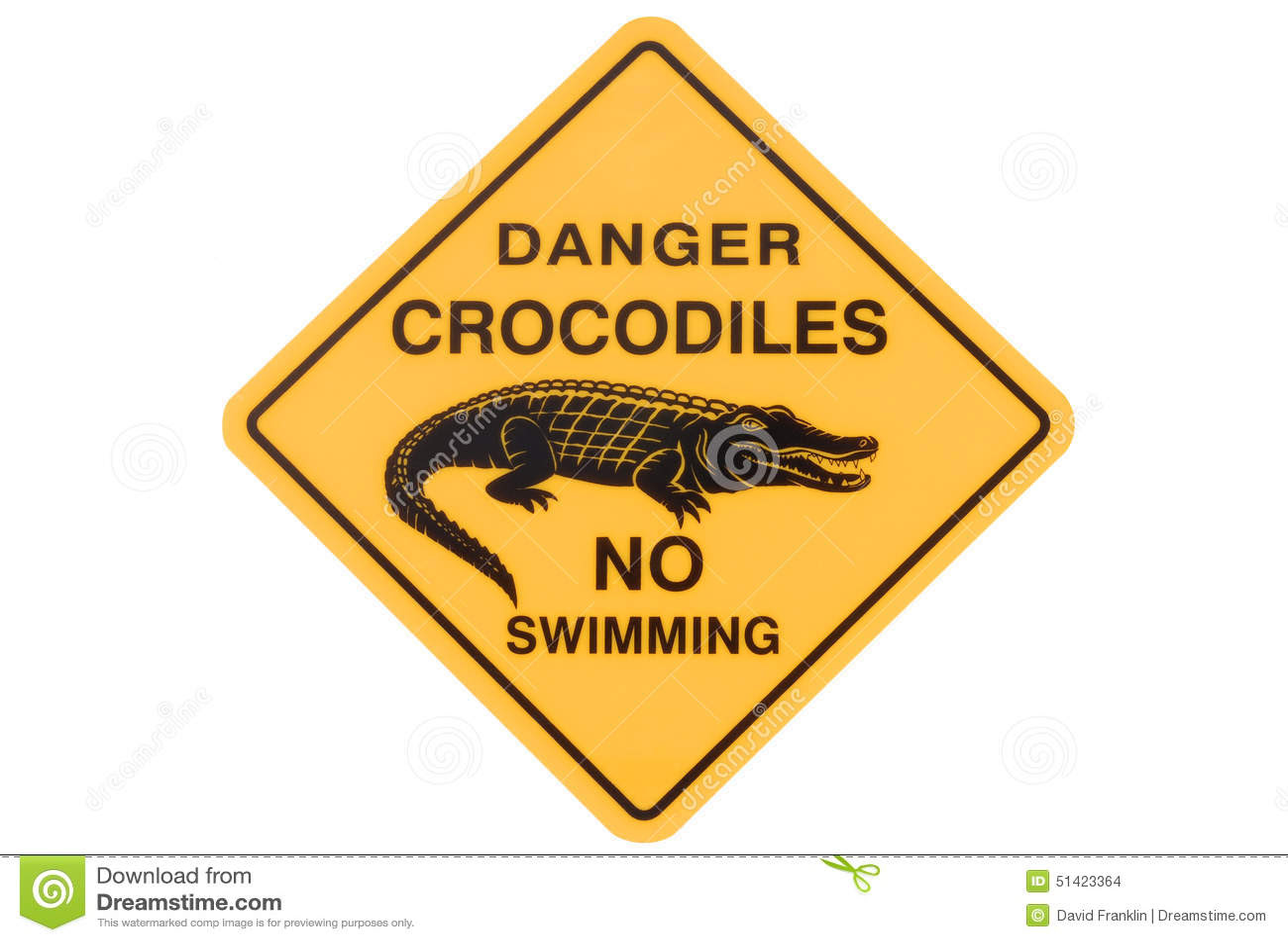crocodile warning sign australian road no swimming isolated white background 51423364