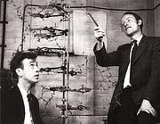 Francis Crick e James Watson con la celebre struttura elicoidale del Dna (Reuters)