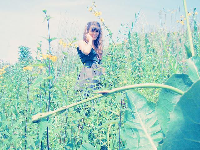 WILDFLOWERS15