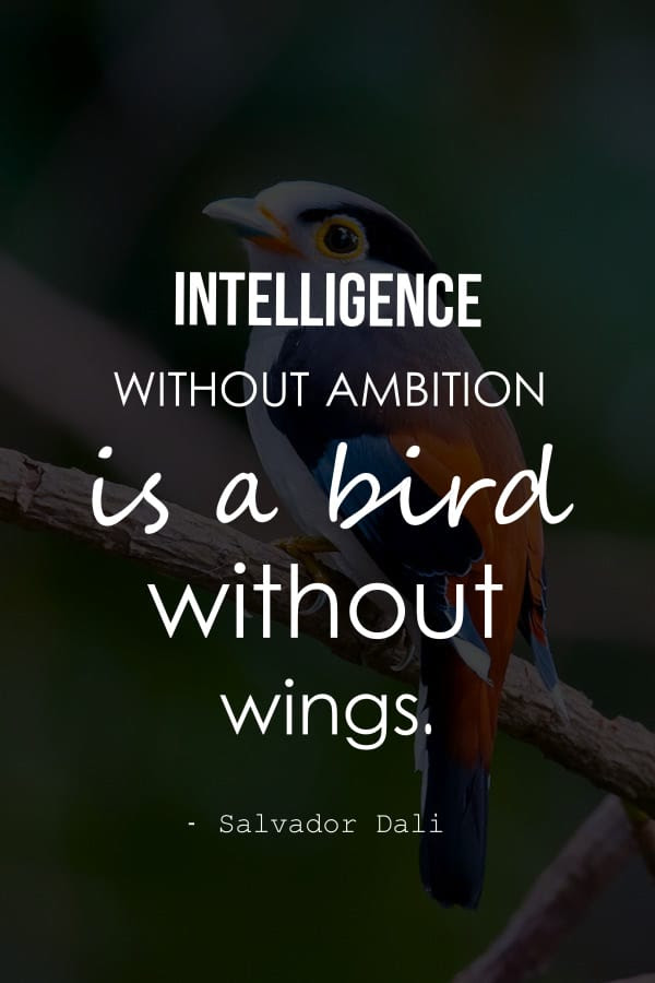 Ambition Quotes In Hindi Inspirational And Sayings Intelligence