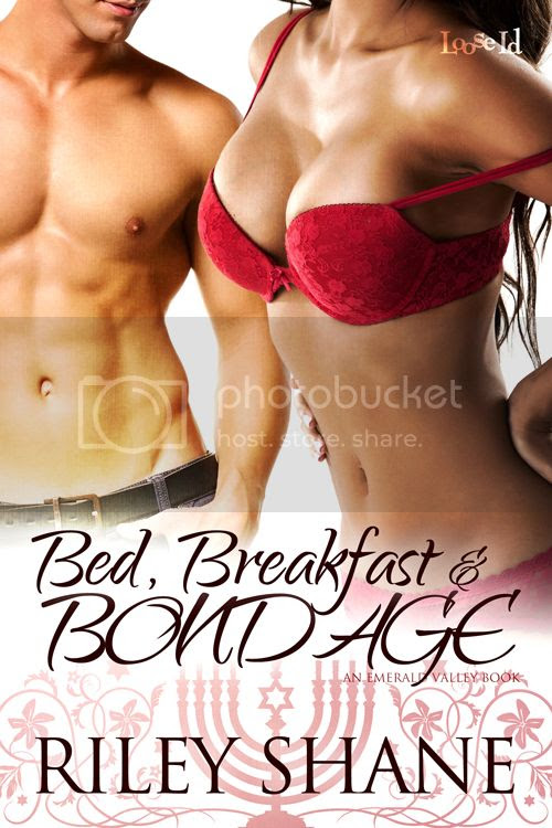 Bed Breakfast and Bondage Cover