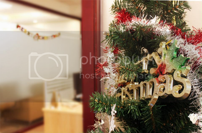 photo christmas6.png