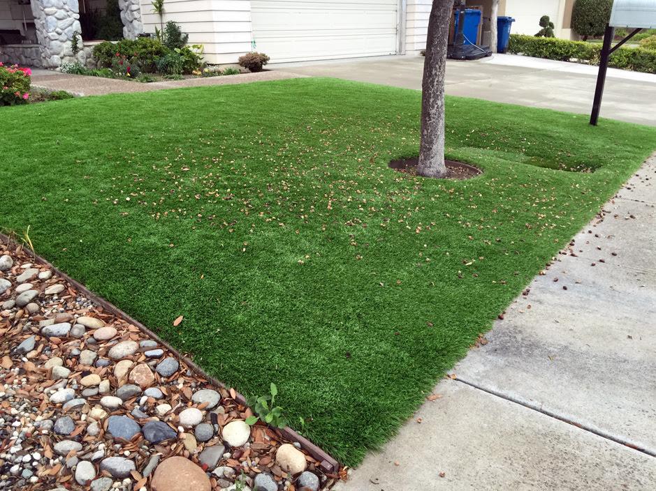Fake Grass Idyllwild Pine Cove California Garden Ideas Front Yard