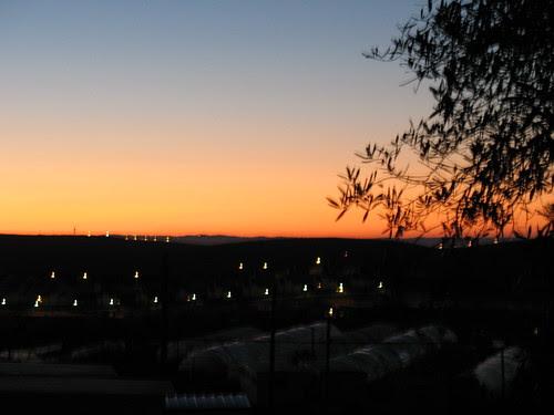 pre-Pesach dawn1