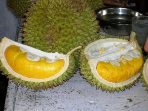 NOT FOR EVERYONE: The 'musang king' durian