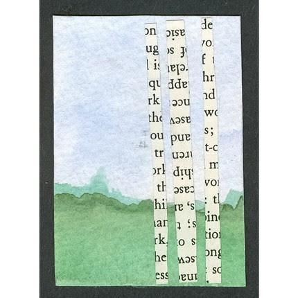 birch words