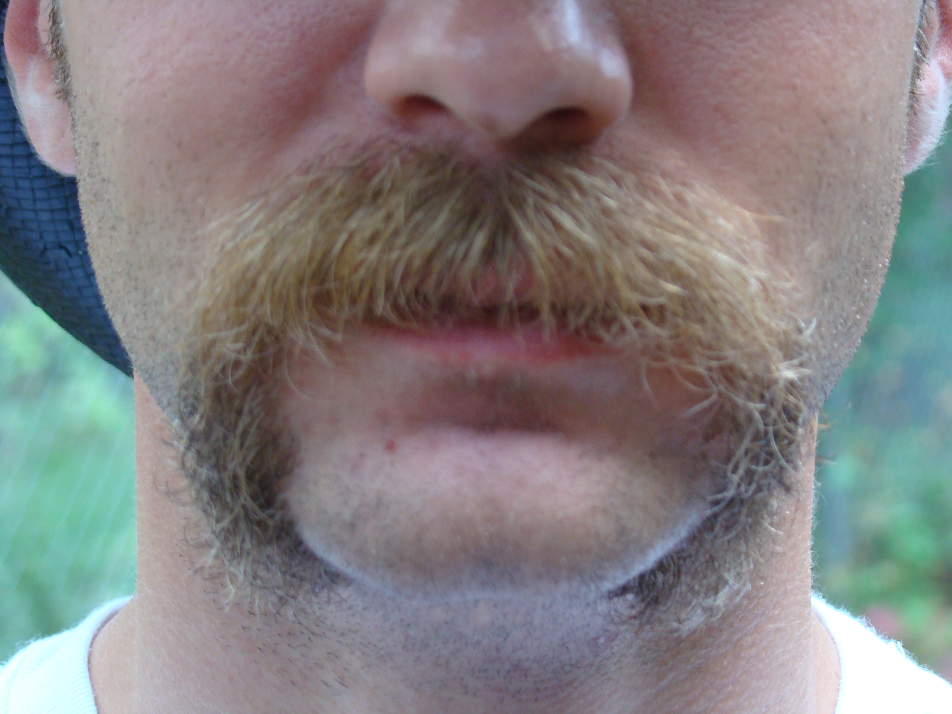 The Motion Sick, 'Stache Wednesday - Free