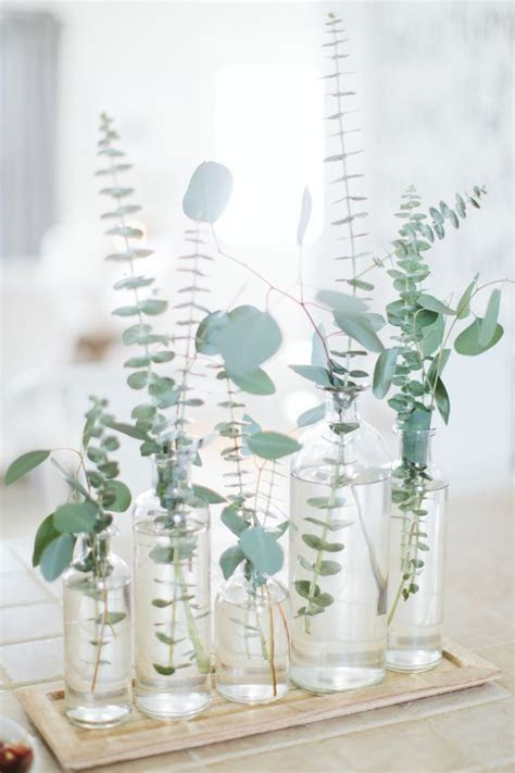 Best 25  Eucalyptus centerpiece ideas on Pinterest