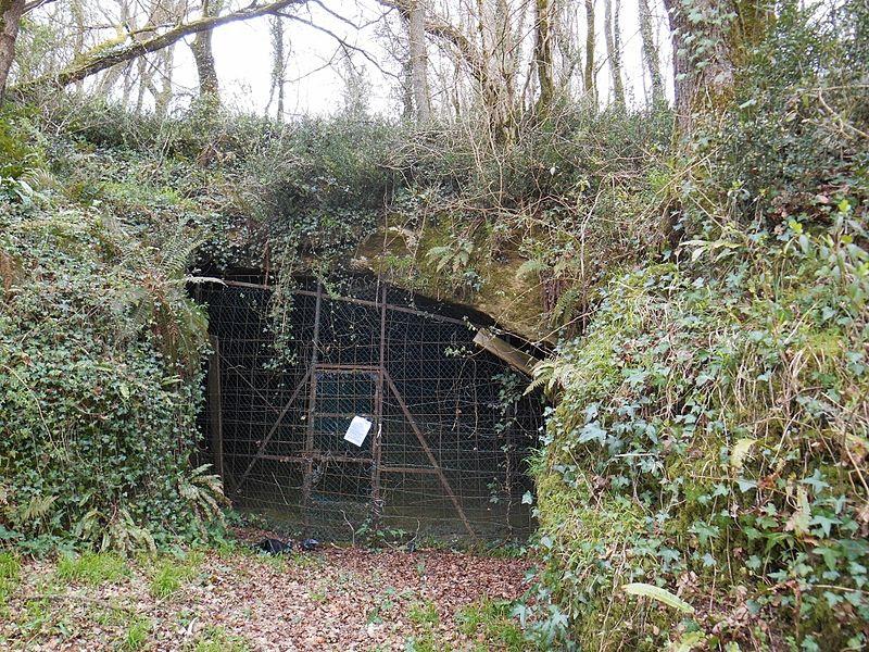 Boca de acceso a la Cueva del Papa (Dame de Brassempouy/CC BY-SA 4.0)