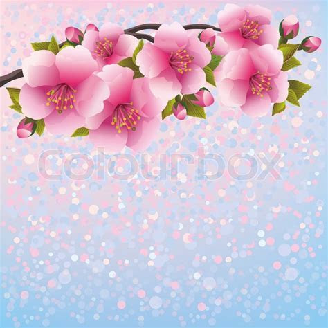 Purple Background With Sakura Blossom     Stock Vector