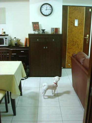 Standing at Mater Bedroom Door