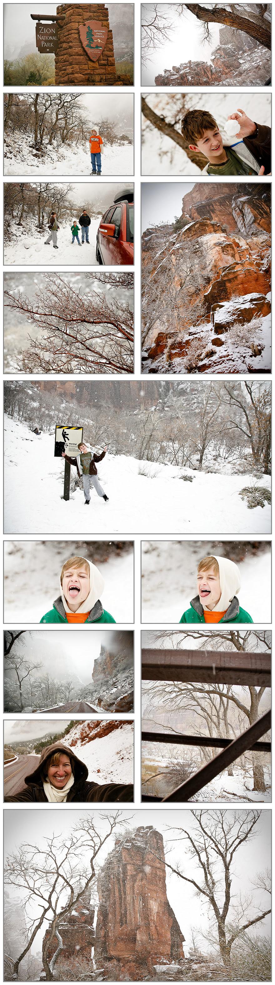 winter zion blog