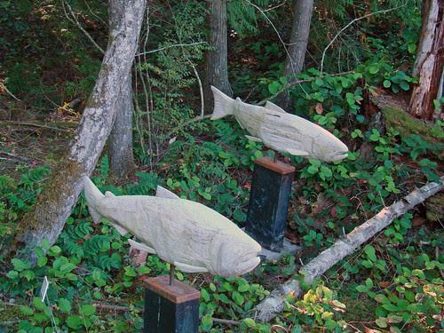 2009-10-04 Salt Spring Island 067