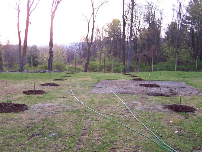 Making a Garden 2012 | KUNSTLER