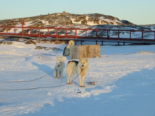 2015-03-12-1426169533-5776988-Greenland333.JPG