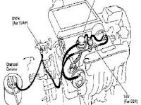 Download 1998 Camry Vacuum Diagram Background