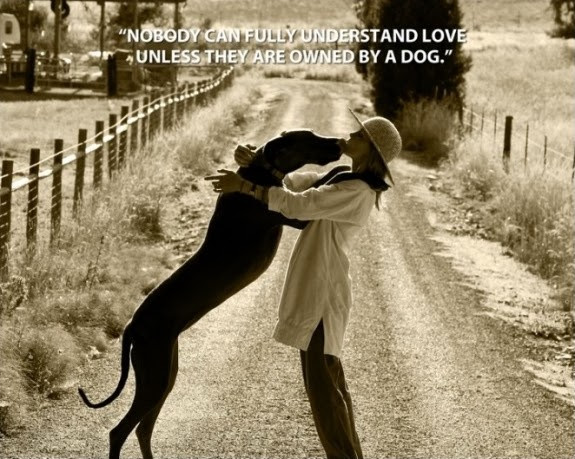 Dog Love Quotes Dog Love Sayings Dog Love Picture Quotes