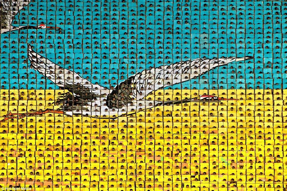Soaring sucesso: A placa-turners combinam para criar uma imagem impressionante de pássaros voando
