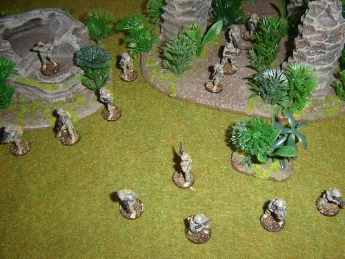 Sakhan Heavy Infantry