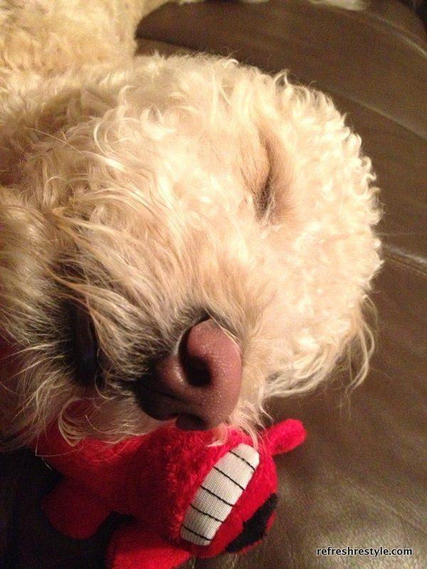 Murphy relaxed
